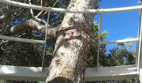 Detalle para salvar árbol dentro de la estructura